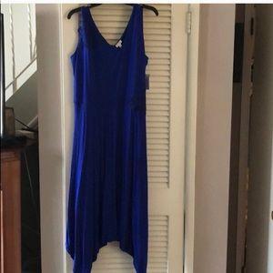 Spense Royal Blue Lace Appliqué Dress